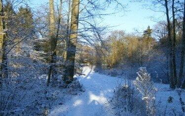 Retraitecentrum Klein Sion tuin sneeuw